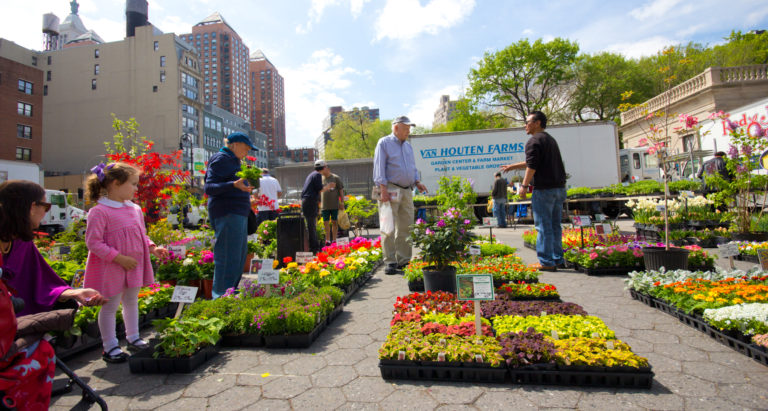 Union Square Greenmarket, New York City © Littleny | Dreamstime 30649697