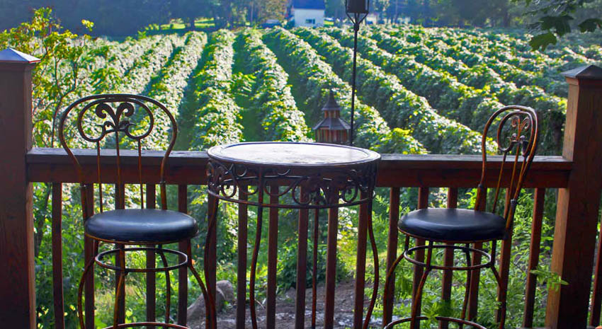 A perfect place for a glass of wine at Imagine Moore Winery, Naples