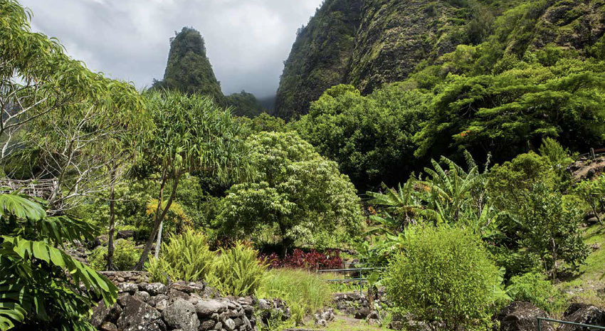 The botanical garden in Iao Valley State Park with the Iao Needle in the background © CHRISTOPHER ENG WONG | DREAMSTIME.COM