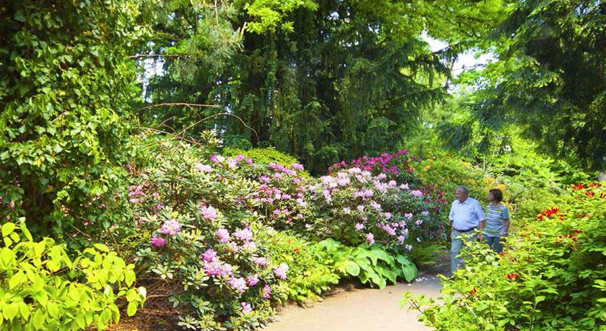 Old Botanical Garden Park