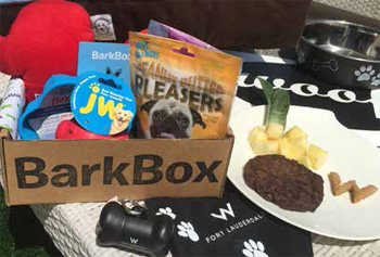 W Fort Lauderdale's in-room Bark Box
