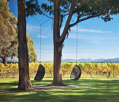 Swings at Cloudy Bay Vineyards in New Zealand © CLOUDY BAY