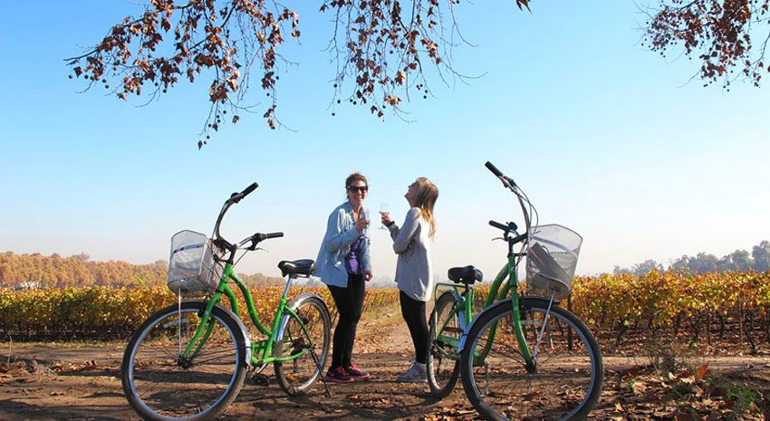 Bike riding and wine tasting in Valle de Maipo © TURISMO CHILE / JUAN JAEGER