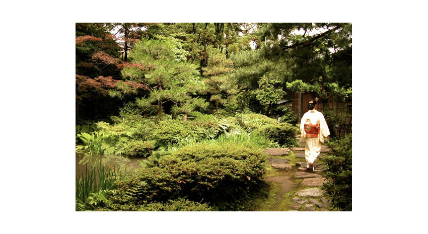 Tea ceremony masters
