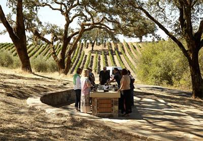 Jordan Winery outdoor wine and olive oil tasting © JORDAN WINERY