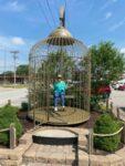 Casey bird cage