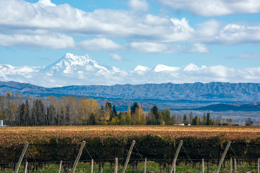 Mendoza, Argentina © Kseniya Ragozina   Dreamstime.com